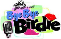 Bye Bye Birdie in Minneapolis / St. Paul