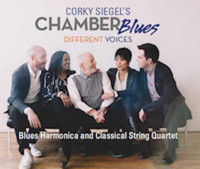 Corky Siegel Chamber Blues with Lynne Jordan in Chicago