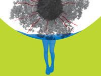 An Oak Tree by Tim Crouch in Philadelphia