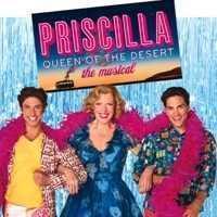 PRISCILLA Queen of the Desert the musical in Broadway