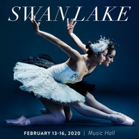 Swan Lake  in Cincinnati