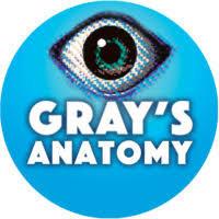 GRAY'S ANATOMY in Appleton, WI