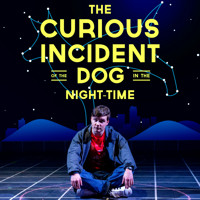The Curious Incident Of The Dog In The Night-time in Central Pennsylvania