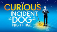 The Curious Incident of the Dog in the Nighttime in San Antonio
