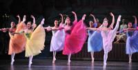New Jersey Ballet's Nutcracker in New Jersey