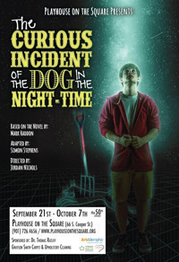 The Curious Incident of the Dog in the Night-Time in Broadway