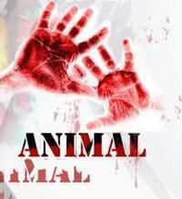 ANIMAL in Ireland