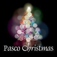 Pasco Christmas in Tampa