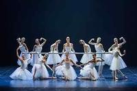 Eifman Ballet in Israel