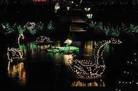 Holiday Festival in Albuquerque