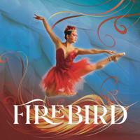 Firebird in Minneapolis / St. Paul