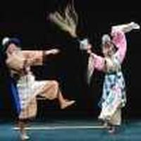 Peking Opera in Netherlands
