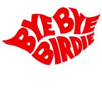 Bye Bye Birdie in Detroit