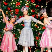 Ballet Fedotov's Nutcracker in Miami