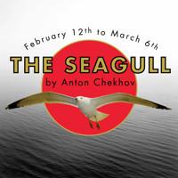 The Seagull in San Antonio