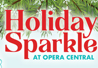 Holiday Sparkle in Tampa/St. Petersburg