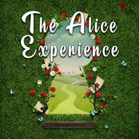 The Alice Experience in Costa Mesa