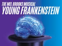 The Mel Brooks Musical Young Frankenstein in Sarasota Logo