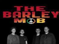 The Barley Mob in Ireland
