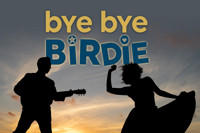 Bye Bye Birdie in Ft. Myers/Naples