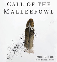 Call of the Malleefowl in Australia - Adelaide