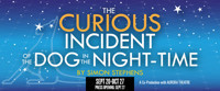 The Curious Incident of the Dog in the Night-Time in Atlanta