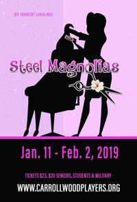 Steel Magnolias in Tampa