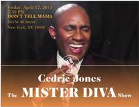 The Mister Diva Show in Other New York Stages