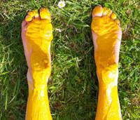 Mustard in Ireland