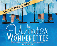 Winter Wonderettes at The Noel S. Ruiz Theatre in Long Island