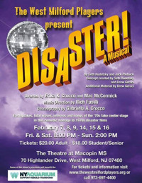 Disaster! A Musical in New Jersey