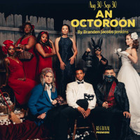 An Octoroon in Dallas