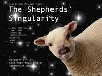 The Shepherds' Singularity in Boston
