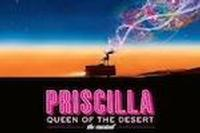 Priscilla Queen of the Desert in Broadway