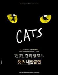 Cats in South Korea