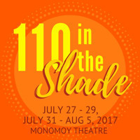 110 in the Shade in Broadway