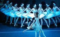 State Ballet Theatre Of Russia: Swan Lake in St. Petersburg