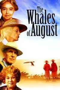 Whales of August in Dayton