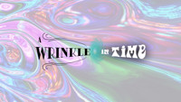A WRINKLE IN TIME by Madeleine L'Engle in Raleigh