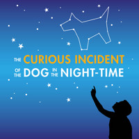 The Curious Incident of the Dog in the Night-Time in Charlotte