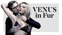 Venus in Fur in Australia - Perth