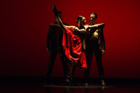 Ballet Hispánico Holiday Celebration Club HavanaWatch Party Benefit in Off-Off-Broadway
