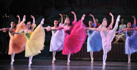 New Jersey Ballet's Nutcracker  in New Jersey