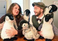Mr. Popper's Penguins in Broadway
