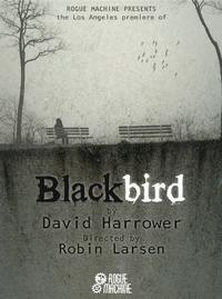 Blackbird in Los Angeles