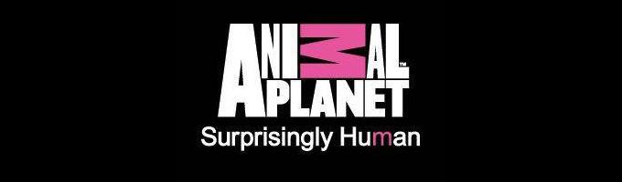 TV - ANIMAL PLANET