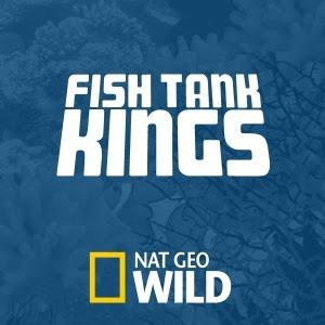 Fish tank kings season 2 to premiere on nat geo wild 6 1 for Fish tank kings