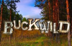 Buck Wild small logo
