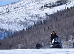 Yukon Men small logo