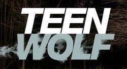 Teen Wolf small logo